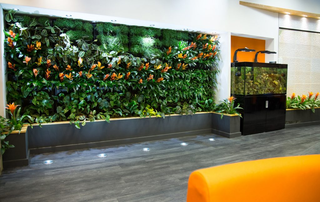 living walls for offices